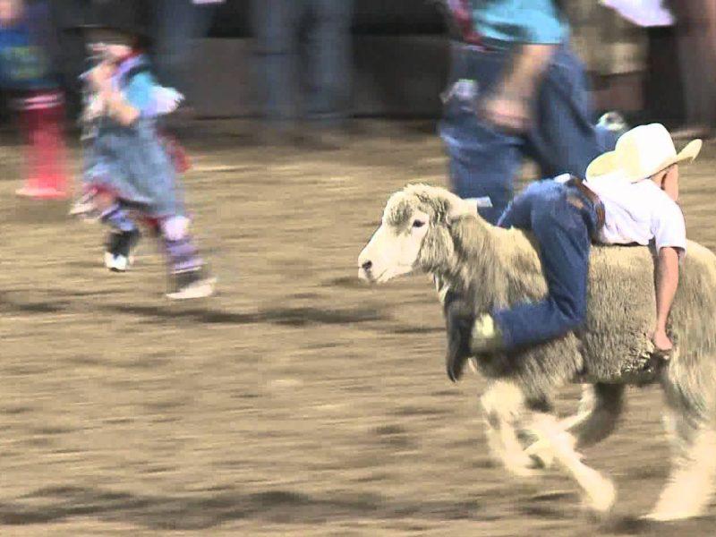 Enumclaw-Pro-rodeo