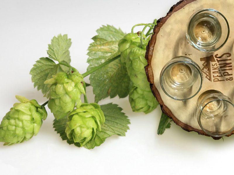 Craft-Beer-Crosscut-3-26-18-A-Flight-of-Mandarina-Bavaria
