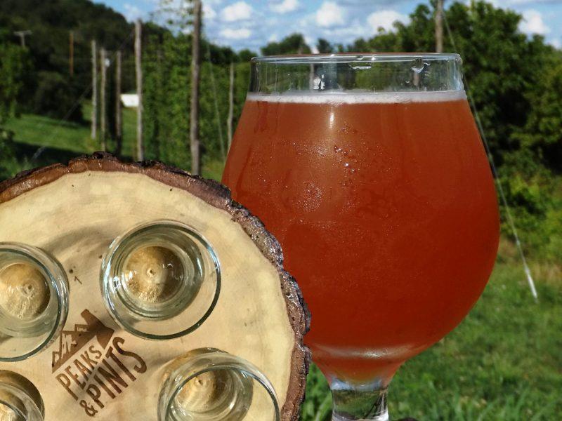 Craft-Beer-Crosscut-6-22-18-A-Flight-of-Farmhouse-Ales-