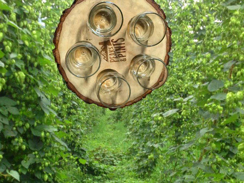 Craft-Beer-Crosscut-9-14-18-A-Flight-of-Fresh-Hops