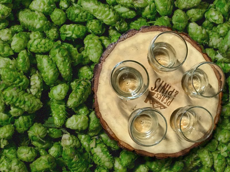 Craft-Beer-Crosscut-9-21-18-A-Flight-of-Wet-and-Fresh-Hops