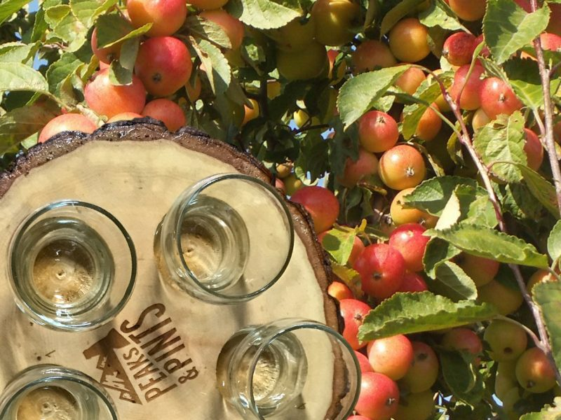 Peaks-and-Pints-Monday-Cider-Flight-9-10-18-A-Flight-of-Washington-Cider-Week