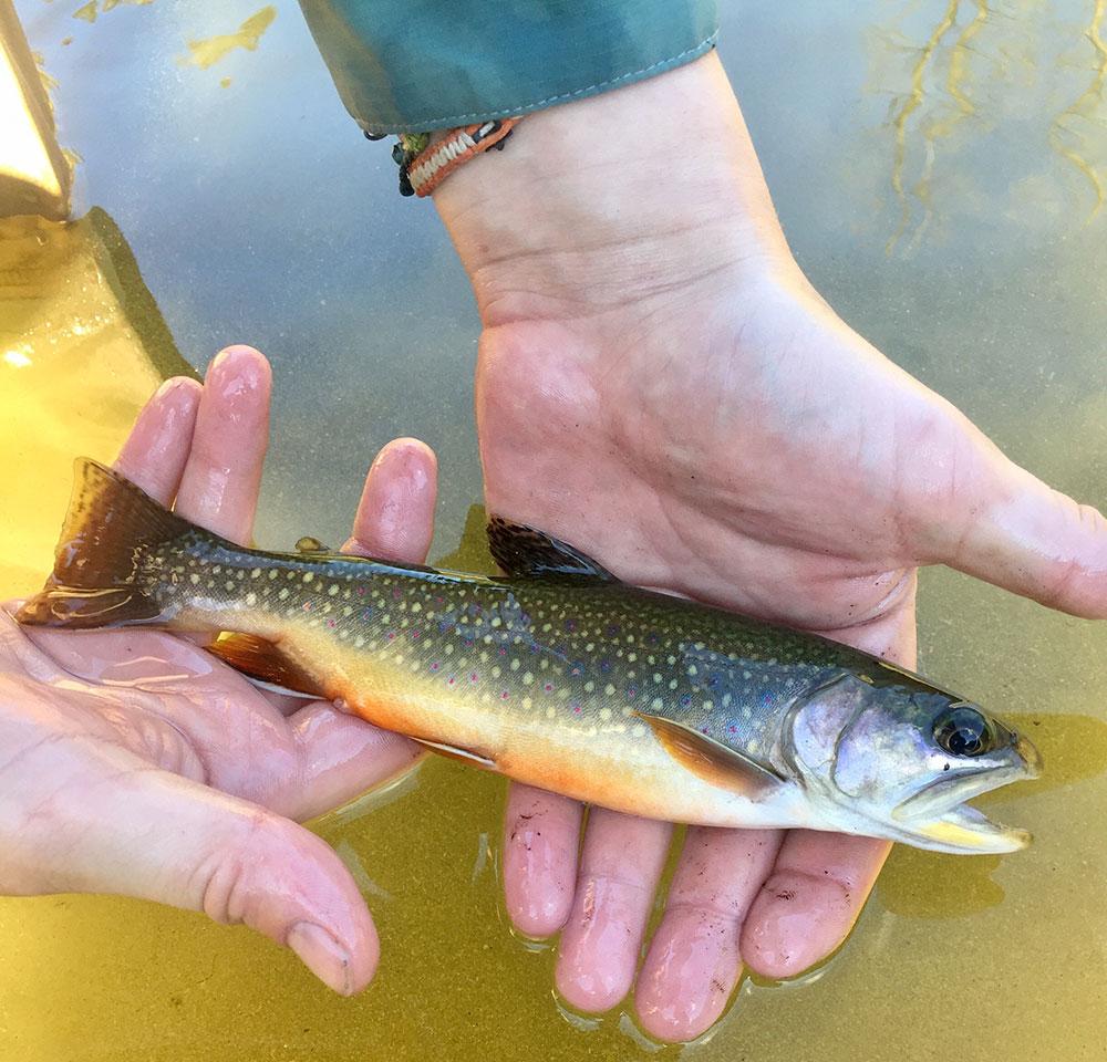 Fishing-at-Little-Gee-Lake-in-Washington-state
