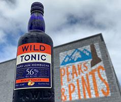 Wild-Tonic-Mango-Ginger-Jun-Kombucha-Tacoma