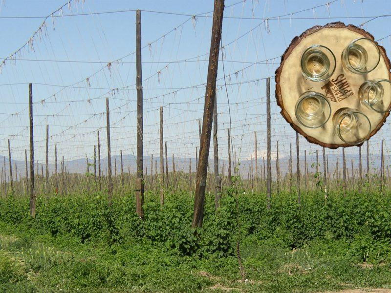 Craft-Beer-Crosscut-9-26-19-Flight-From-Yakima