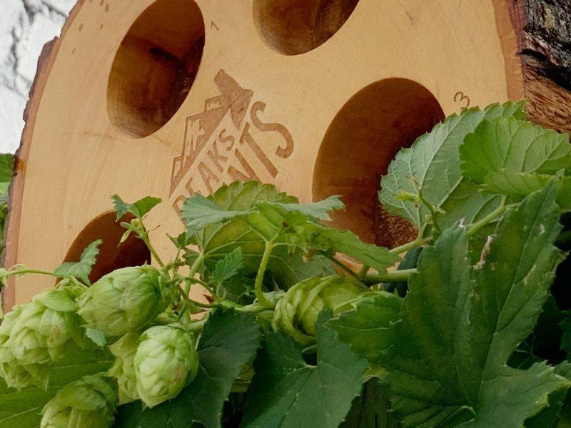 Craft-Beer-Crosscut-9-29-19-Flight-of-Fresh-Hops