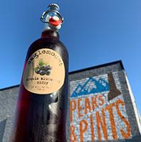 Eaglemount-Aronia-Blueberry-Tacoma