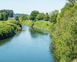 Tacoma-water