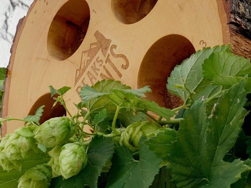 Craft-Beer-Crosscut-10-9-19-Flight-of-Wet-Hops