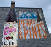 Finnriver-Cranberry-Rosehip-Tacoma