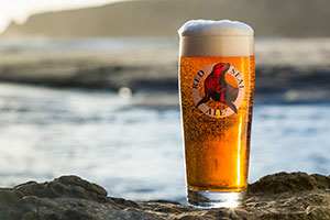 Tournament-of-Beer-West-Coast-Flagships-North-Coast-Red-Seal