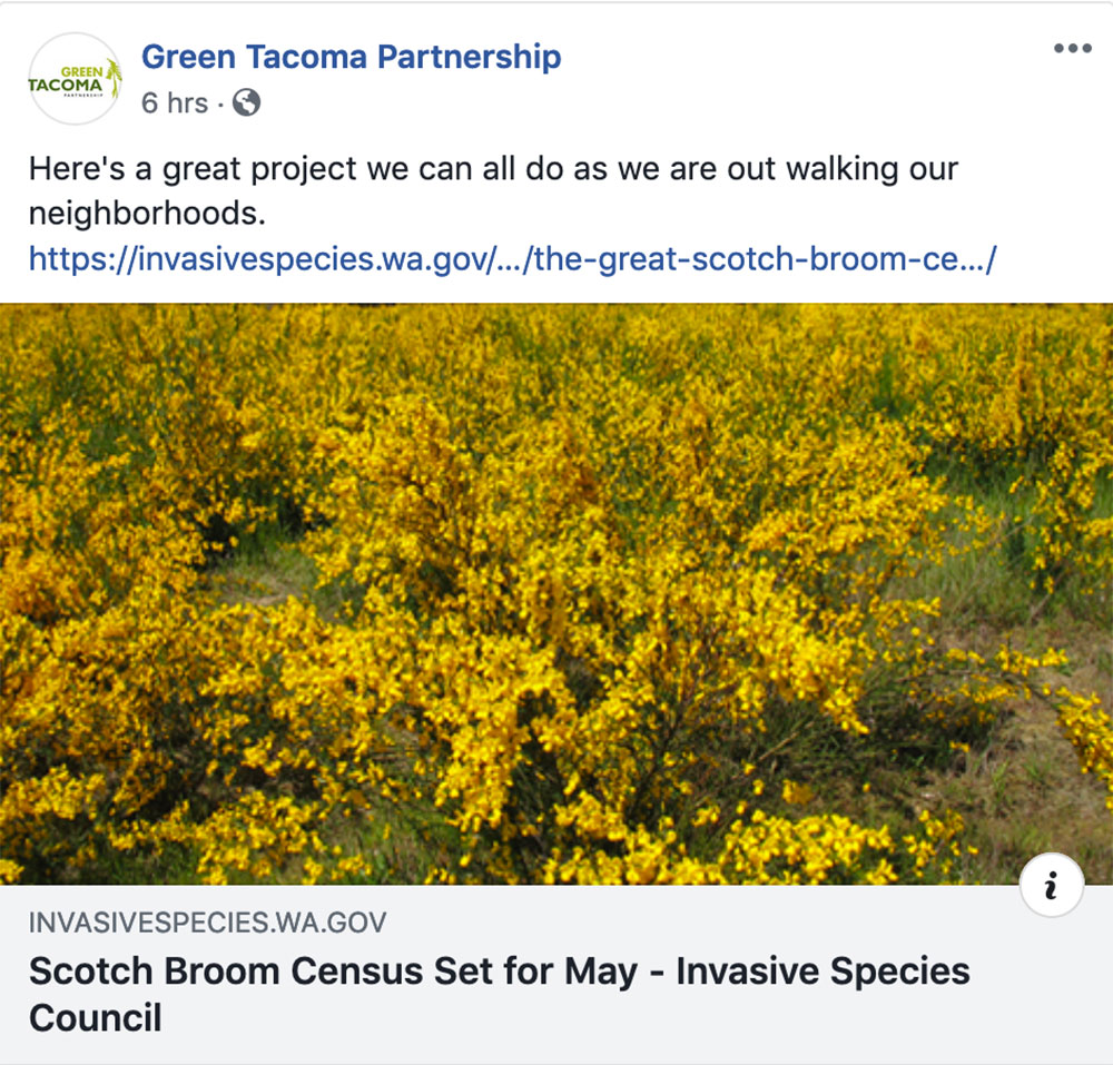 TAcoma-Strong-Green-Tacoma-Partnership