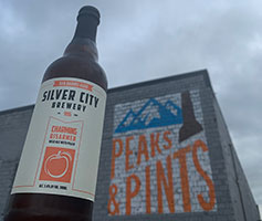 Silver-City-Charming-Disarmer-Wild-Ale-with-Peach-Tacoma