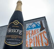 Alesong-Senor-Rhino-Tacoma