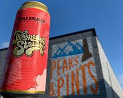 Bale-Breaker-Pinwheel-Party-Imagination-Station-2-Tacoma