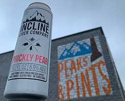 Incline-Prickly-Pear-Tacoma