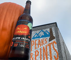 2-Towns-Hollow-Jackd-Imperial-Pumpkin-Cider-Tacoma