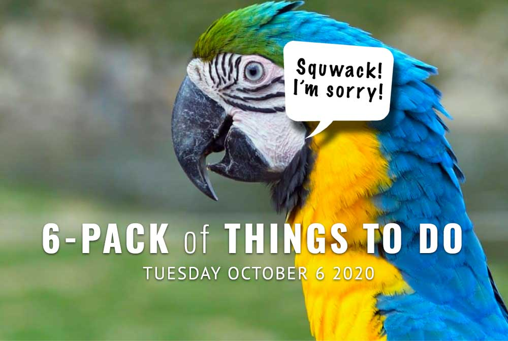 6-Pack-Photo-Animal-Shout-Outs-10-6-20